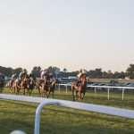wedden op paarden races
